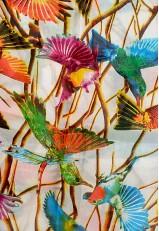 Pañuelo pajaritos colibríes estampado en seda Mora